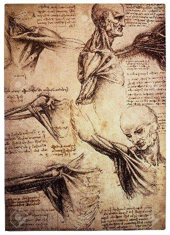Görsel 6. Leonardo Da Vinci's drawings